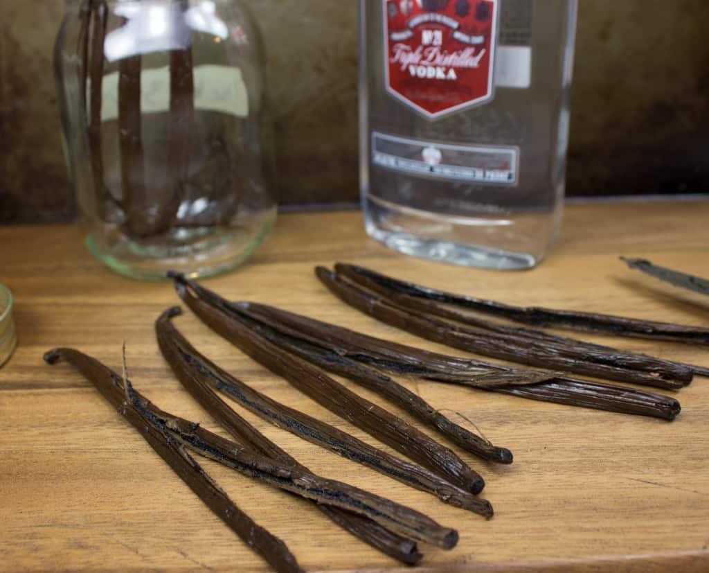 Vanilla Beans for Vanilla Extract